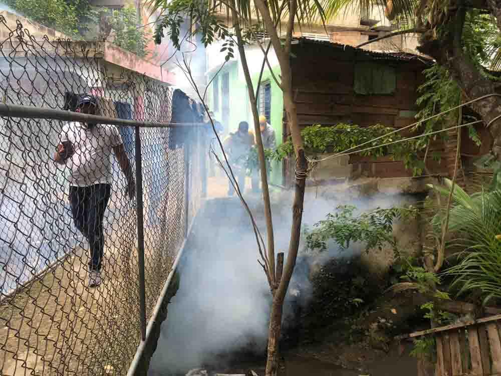 fumigación en los Sectores de Villa Olga y Amansa Tiguere