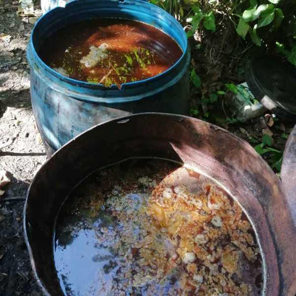 bebidas adulteradas en Monte Plata