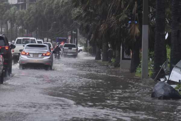 Tormenta Fred derriba árboles y causa inundaciones en Santo Domingo